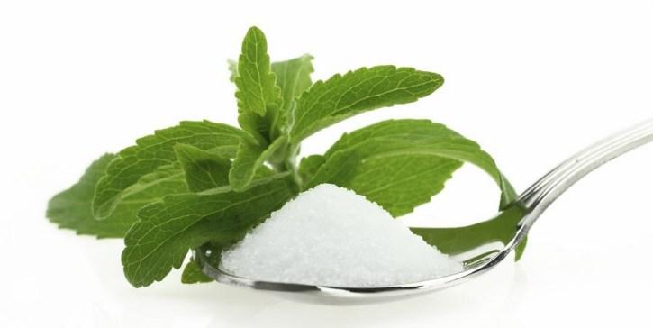 сахарозаменитель стевия медовая